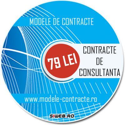 model contract consultanta